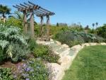Perennial-Edible Garden Steps
